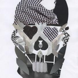 Paper Art Pirate Collage